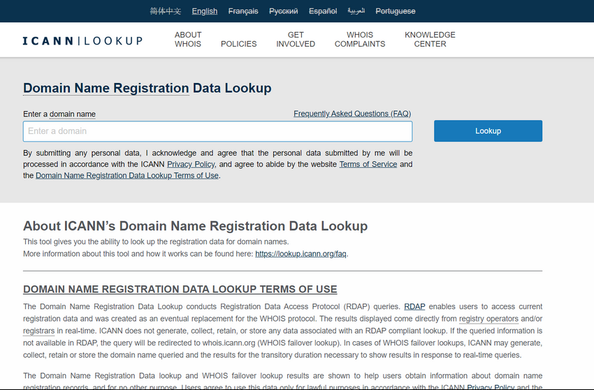 The figure is a screen shot of the ICANN DNS Domain Name Registration Lookup web page.